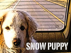 Image for Snow Puppy