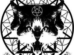 Image for Animality