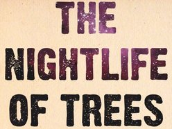 Image for The Nightlife of Trees
