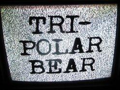 Image for Tri-polar Bear