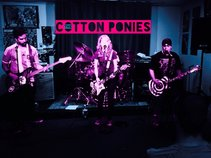 The Cotton Ponies