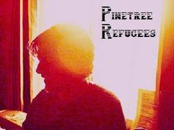 Image for Pinetree Refugees