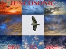 Juncosonic