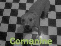 Comanine