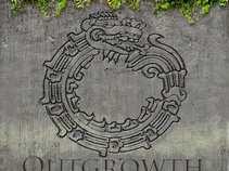 Outgrowth