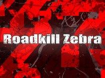 Roadkill Zebra