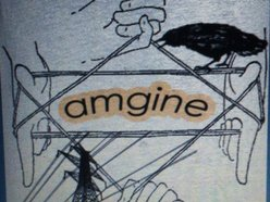 Image for Amgine