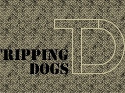 Image for TRIPPING DOGS