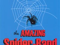 the amazing spider band