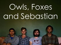 Owls, Foxes and Sebastian