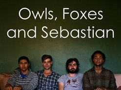 Image for Owls, Foxes and Sebastian