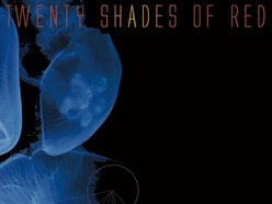 Image for Twenty Shades Of Red