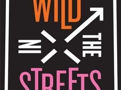 Image for Wild in the Streets
