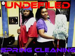 Image for Undefiled