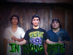 Image for In Dying Fate