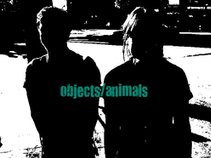objects/animals