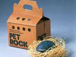 Image for Pet Rock