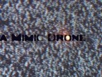 a Mimic Drone
