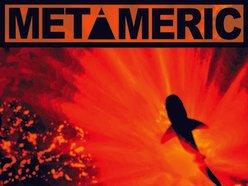 Image for Metameric