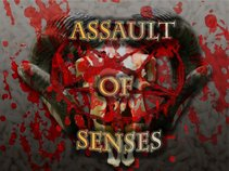 Assault Of Senses