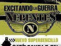 NEPENTES
