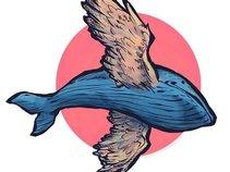 WhaleHawk
