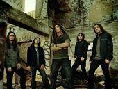 Image for Shadows Fall