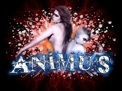 Image for Animus