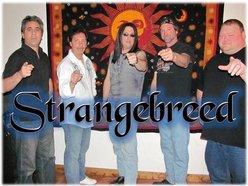 Image for STRANGEBREED