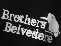 Image for Brothers Belvedere
