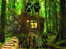 Wolf Pause