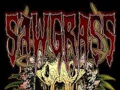 Image for SawGrass
