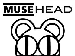 Image for MUSEHEAD
