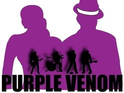 Image for Purple Venom