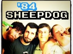 Image for '84 SheepDog