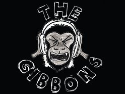 Image for The Gibbons