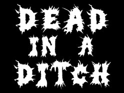 Image for Dead In A Ditch