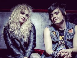 Image for The Dollyrots