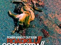 roadkill orchestra