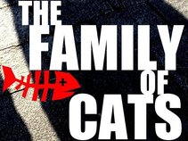 The Cats' Collective & Family of Cats