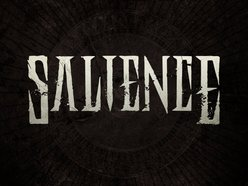 Image for Salience