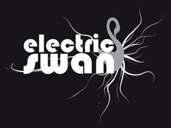 Image for electric swan