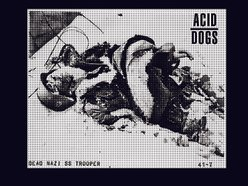 Image for Acid Dogs