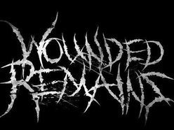 Image for Wounded Remains USA