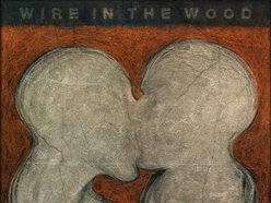 Image for Wire in the Wood