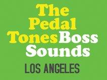 The Pedal-Tones!