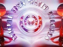 BluWhiz - Thicker then Water Records