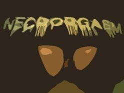 Image for Necrorgasm