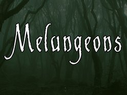 Image for Melungeons