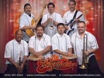 LOS ELEGANTES ®